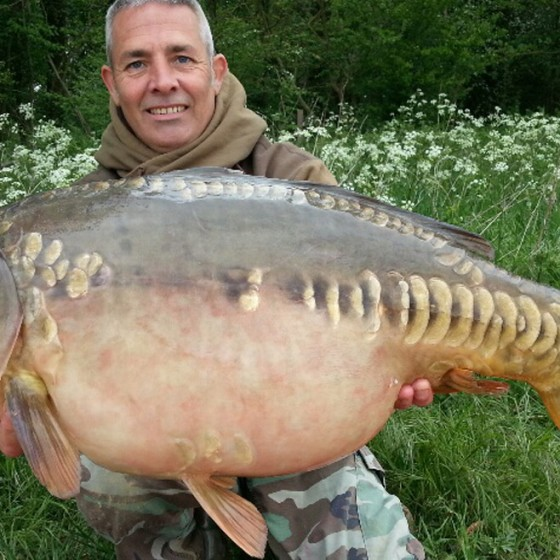 A stunning 29lb mirror carp from St Martins Lake, Suffolk