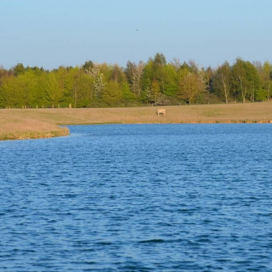 St Martins Lake is 12 acres in size