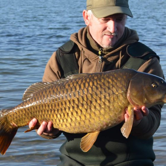 St Genevieve's Lake carp Suffolk