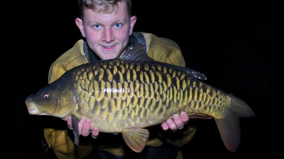 A stunning fully scaled carp is stocked into St Genevieve's Lake, October 2016.