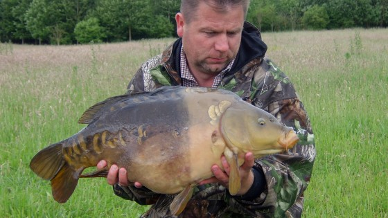 A two-tone mirror carp from St Genevieve Lake, Suffolk