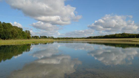 St Martins Lake Suffolk